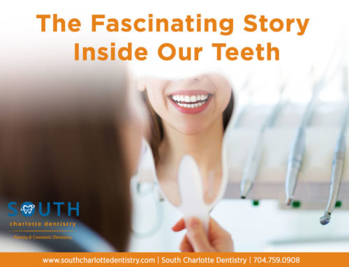 The Fascinating Story Inside Our Teeth
