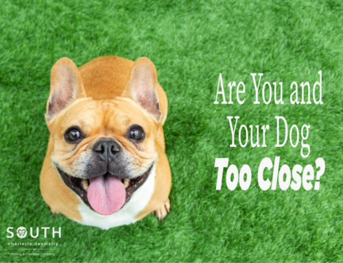 Are You and Your Dog Too Close?